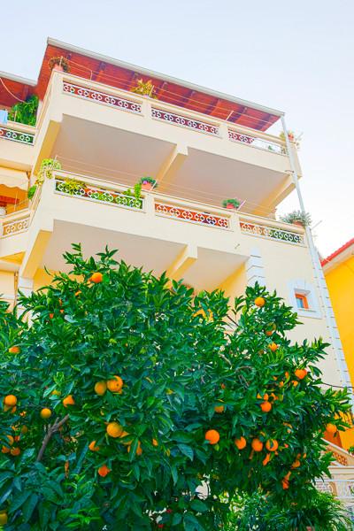 Dimitrakis, Parga, exterior, vila, portocal.jpg