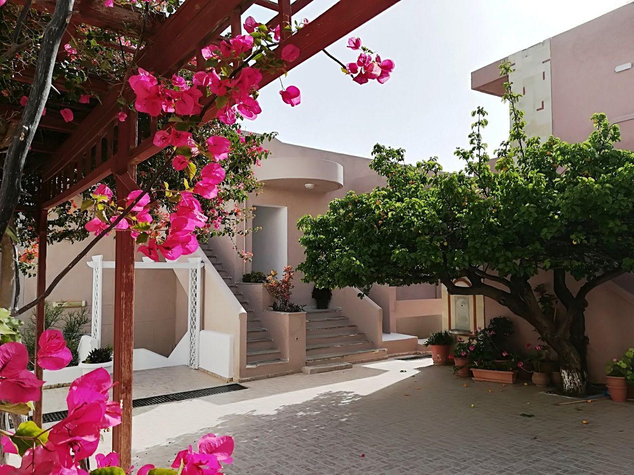 evina-rooms-villas-486.jpg