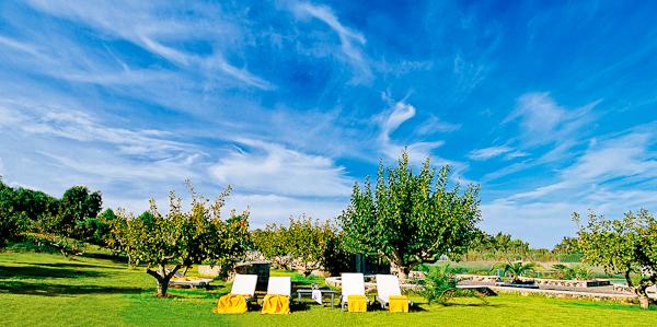 KASTELLI The Pistachio Garden.jpg