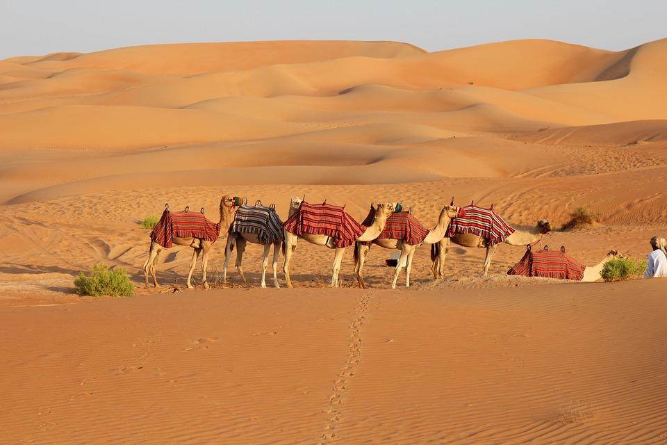desert-3204603_960_720.jpg