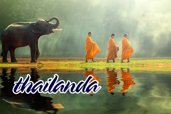 B2B-Thailanda-08.jpg