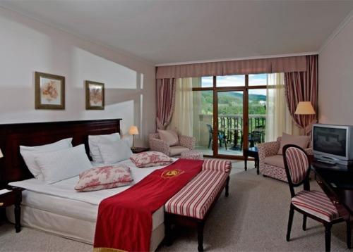 Hotel Melia Grand Hermitage camera.jpg