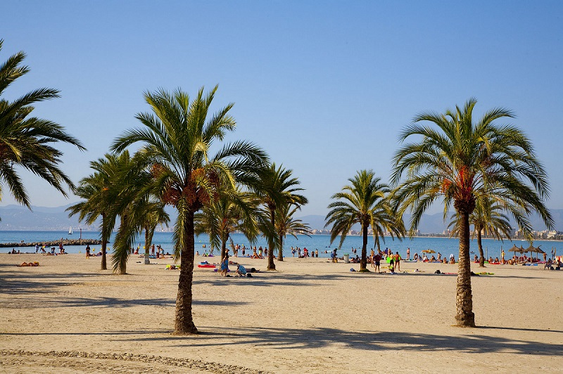 Whala Beach, exterior, plaja.jpg